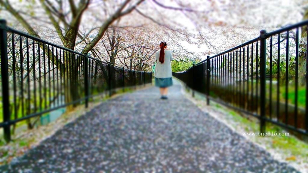 2016.04.10花見34滋賀県東近江市繖公園