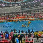 全日本ソフトテニス社会人学生対抗戦2013[結果・動画]
