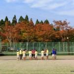 中学ソフトテニス 滋賀県秋季大会2013[結果]