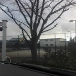 2018/02/05(月)午後 ソフトテニス・個別練習会